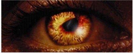 El ojo de Fénix