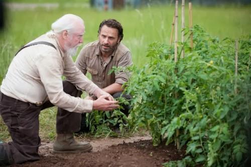 The_Walking_Dead_AMC_temporada_4
