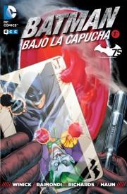 batman_bajo_capucha_ecc_01