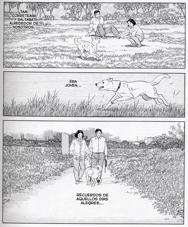 Tierra-de-sueños_Taniguchi_PonentMon_page007