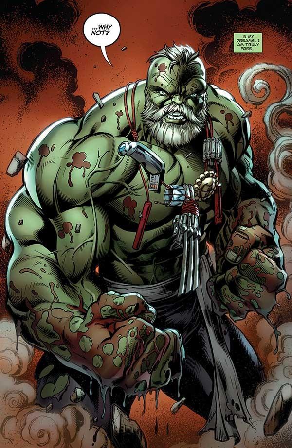 Hulk009_Maestroancho600