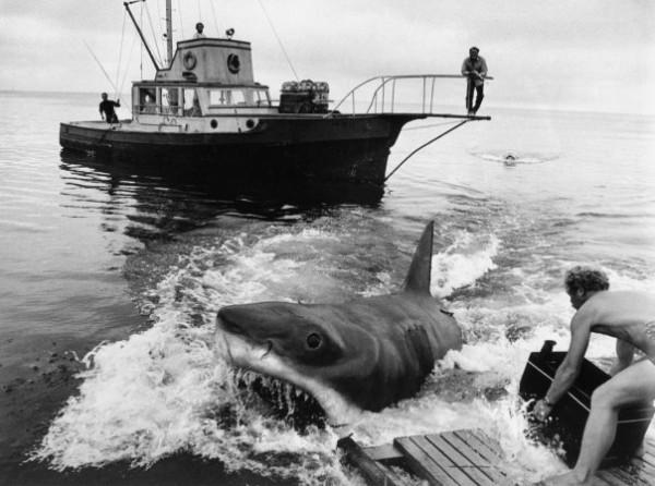 La cámara estanca utilizada en Tiburón, en plena acción