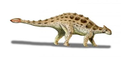 ficha-Ankylosaurus