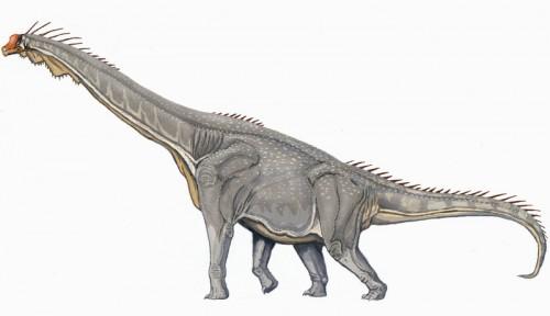 ficha-Brachiosaurus