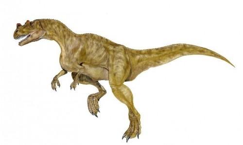 ficha-Ceratosaurus