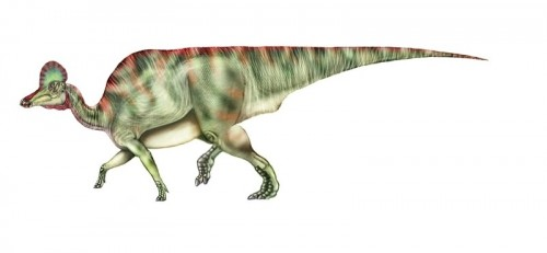 ficha-Corythosaurus