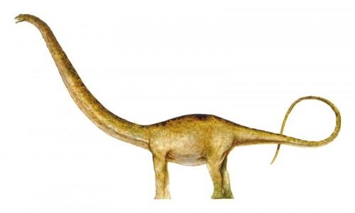 ficha-Mamenchisaurus
