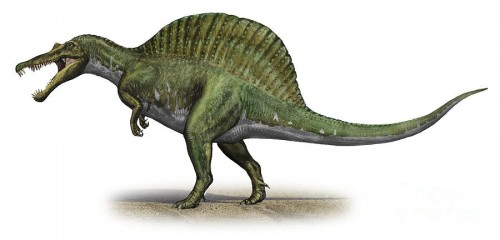 ficha-Spinosaurus