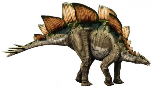 ficha-Stegosaurus
