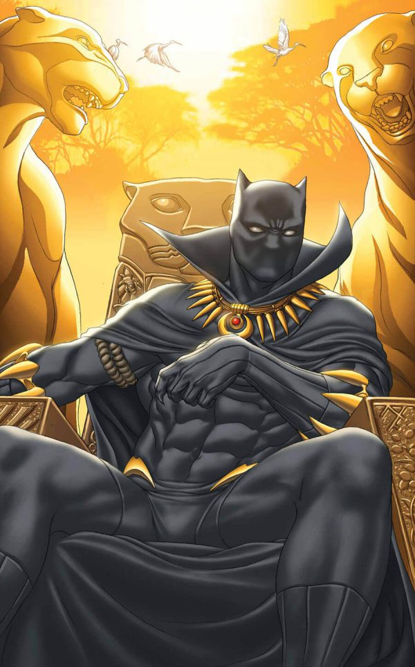 Descubriendo la historia de Pantera Negra [Megapost]