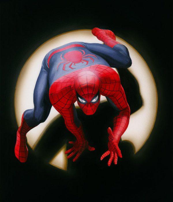 Spider Man Marvels copy