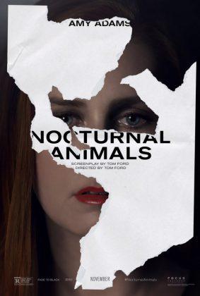 nocturnal-animals-1