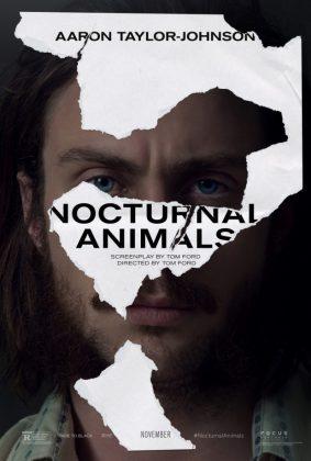 nocturnal-animals-2