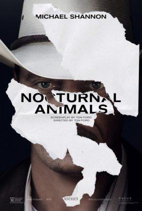 nocturnal-animals-4