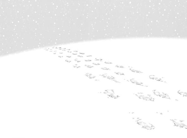 Desaparecido_8_nieve